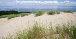 Strand in Boltenhagen