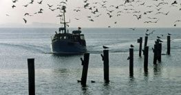 Fischerboot Poel