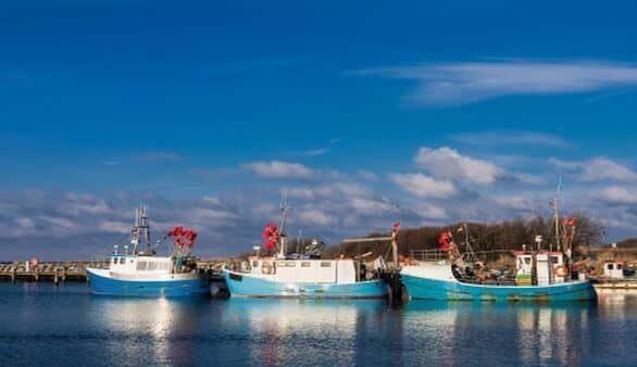 Fischerboote auf der Insel Poel