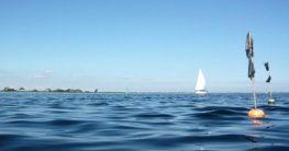 Meer bei Heiligenhafen